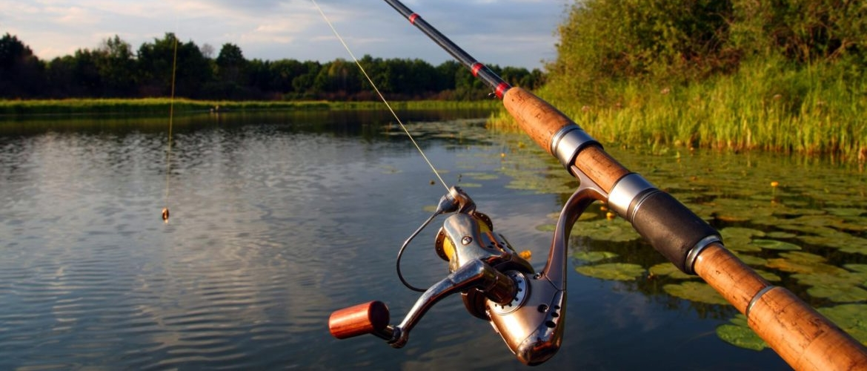 Штрафы и наказания за незаконную рыбалку в 2018 году
